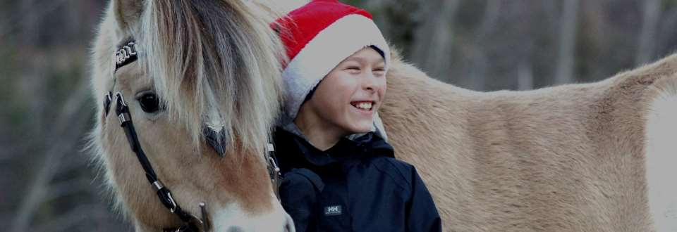 Julemøte på Frestegård